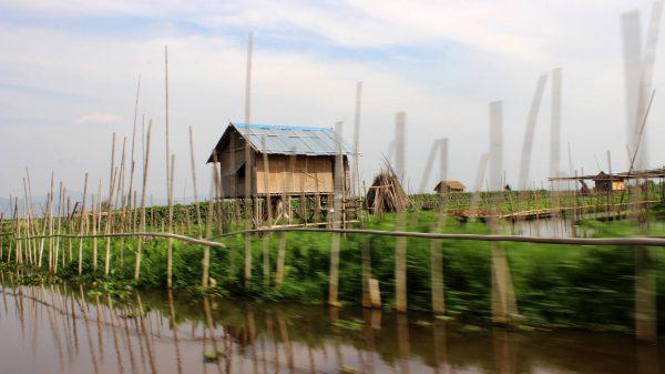 Maisons sur pilotis du lac Inle