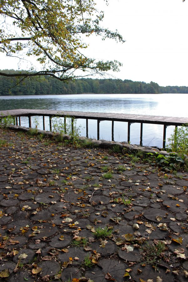 Lac Galvė qui entoure Trakai