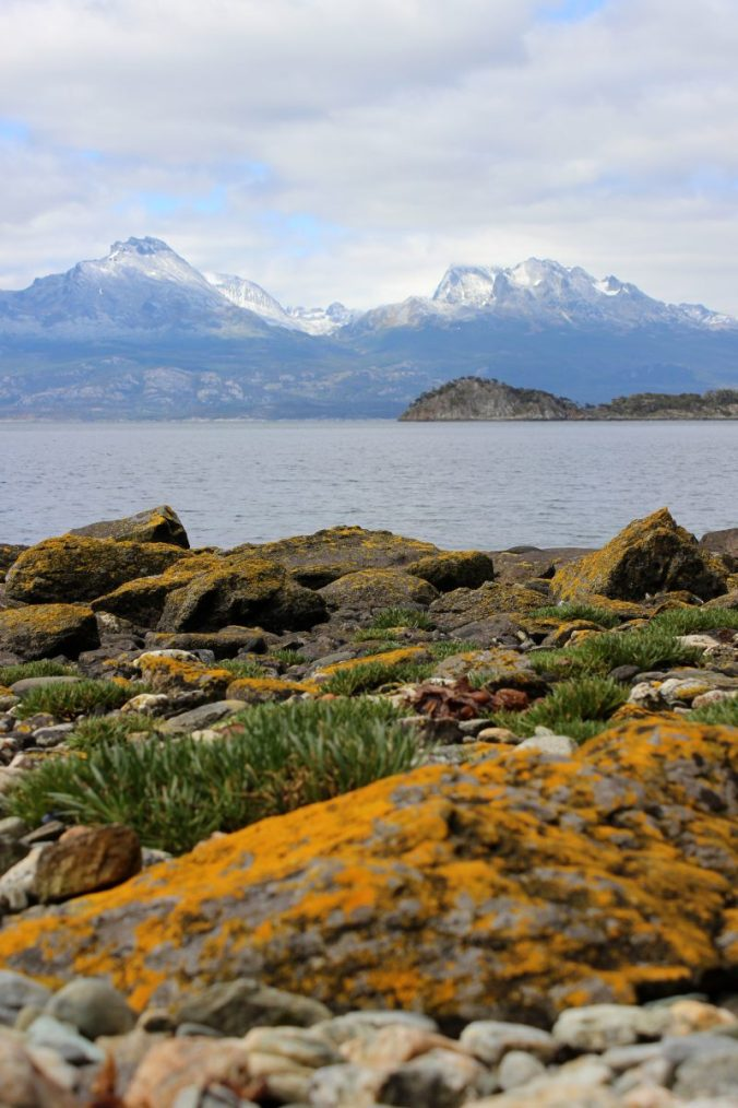 232-tierra-del-fuego-national-park