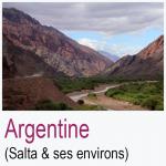 Argentine Salta