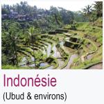 Indonésie Ubud Environs