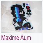 Maxime Aum