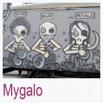 Mygalo